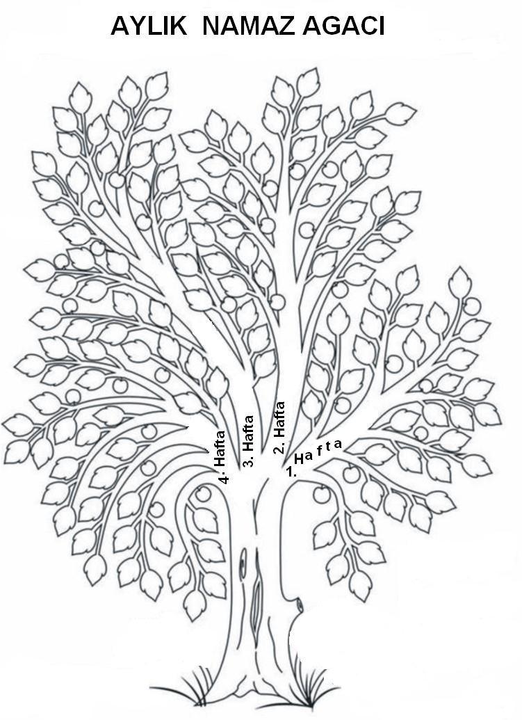 Tekrar heveslendirilmelidir 7 ağacın tümü bittiğinde ve yemyeşil
